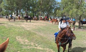 group of horse back riders with trees in background