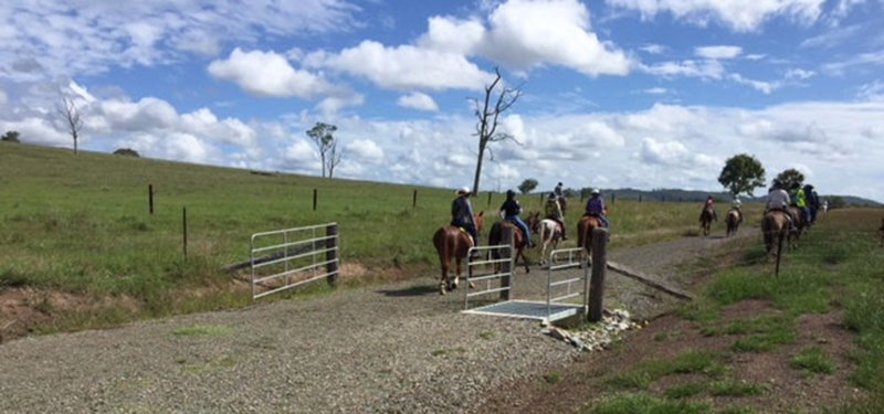 grid and gate on BVRT with horse riders